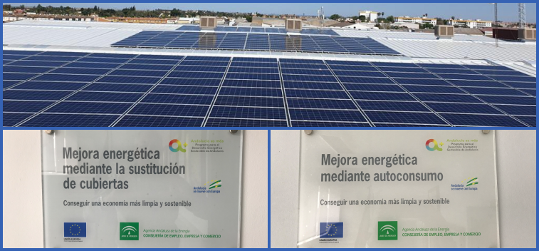 BETIS Olive Oil is committed to sustainable energy development