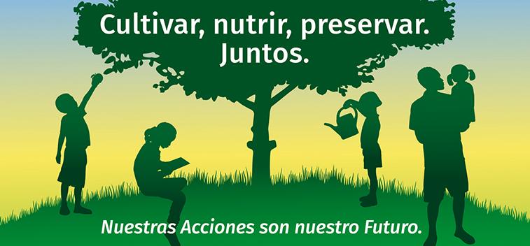 Hitos saludables del AOVE para celebrar el Día Mundial de la Alimentación