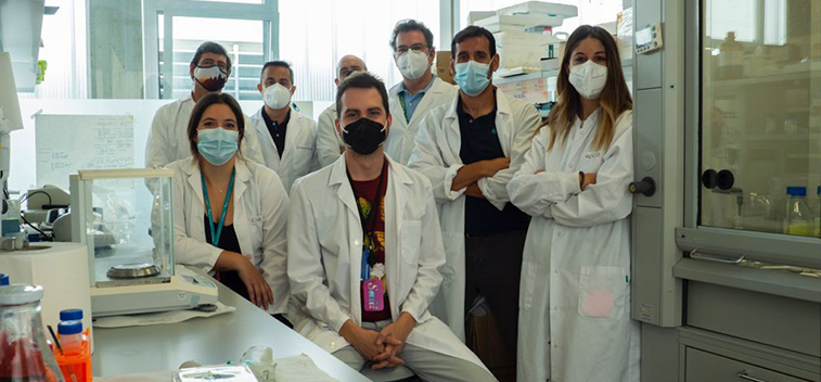 They design smart olive oil nanocapsules effective against cancer stem cells