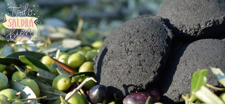 Huesos de aceitunas: combustible ecológico para barbacoas