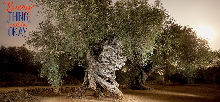 World Olive Day